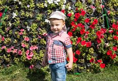 Cute little child boy in park on nature at summer Royalty Free Stock Image