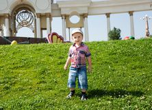 Cute little child boy in park on nature at summer Stock Photos