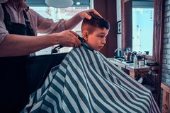 Cute little child is getting trendy haircut from barber at busy barbershop.  stock image