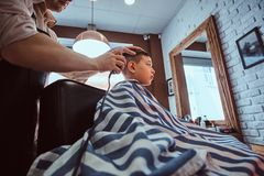 Cute little child is getting trendy haircut from barber at busy barbershop. Small school boy is getting trendy haircut from expirienced barber at modern stock images
