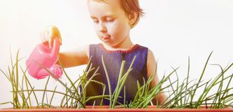 Cute little child girl has fun with watering grass and flowers Royalty Free Stock Image