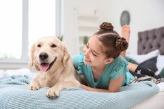 Cute little child with her pet on bed. At home royalty free stock images