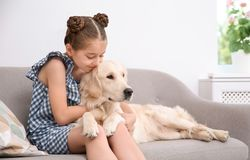 Cute little child with her pet on sofa. At home stock photo