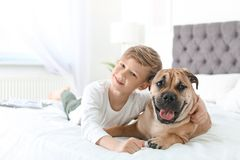 Cute little child with his dog resting on bed Royalty Free Stock Images