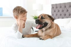 Cute little child with his dog resting on bed Royalty Free Stock Photos