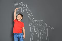 Cute little child measuring height near chalk giraffe drawing. On grey background royalty free stock photos