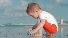 Cute little child plays near the sea, kid catches, considers live sea shells, crabs, on a tropical beach against the stock video footage
