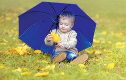 Cute little child with umbrella in autumn Stock Images