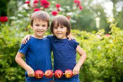 Cute little children, boy brothers, holding a love sign, made fr. Om apples, letter graved in the apple, smiling happily. happiness childhood love concept stock photography