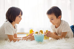 Cute little children, boy brothers, playing with duckling spring Stock Photos