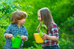 Cute little children enjoying on farm. Ecology concept child. Gardening with a kids.