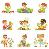 Cute little children playing, gathering and preparing vegetables, set for label design. Cartoon detailed colorful Royalty Free Stock Photos