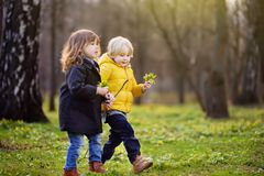 Cute little children playing together in sunny spring park stock images