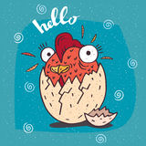 Cute little cock or rooster hatched from an egg Royalty Free Stock Image