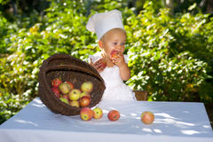 Cute little cook. Royalty Free Stock Image