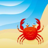 Cute little crab. On the beach Royalty Free Stock Image