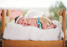 Cute little cupid with wings Royalty Free Stock Photography