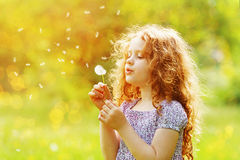 Cute Little curly girl blowing dandelion. Royalty Free Stock Images