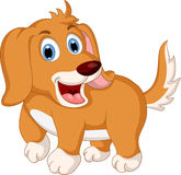 Cute little dog cartoon expression Royalty Free Stock Images