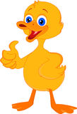 Cute little duck cartoon thumb up Royalty Free Stock Image