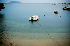 Cute little duck and fishing boats. On beach, cute little duck and fishing boats on sea water Stock Photo