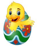 Cute little duck hatched from an egg. Illustration of Cute little duck hatched from an egg Stock Images