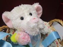 Cute little elephant stuffed toy. Adorable white elephant stuffed toy in basket Royalty Free Stock Photos