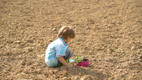 Cute little farmer working with spud on spring field. Happy little farmer planting on spring field - child farmer stock video footage