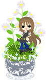 The cute little flowerpot -Erigeron philadelphicus- Stock Photo