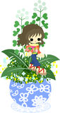 The cute little flowerpot -shepherd's purse- Royalty Free Stock Image