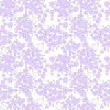 Cute little flowers seamless pattern. White background Royalty Free Stock Photo
