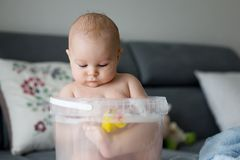 Cute little four month old baby boy, playing in bucket full with royalty free stock images