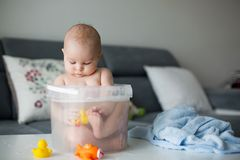 Cute little four month old baby boy, playing in bucket full with stock photography