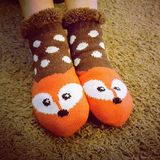 Cute little fox socks Royalty Free Stock Images
