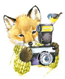 Cute little fox. Watercolor fox. Stock Image