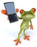 Cute little frog Royalty Free Stock Images