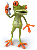 Cute little frog Royalty Free Stock Photos