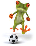 Frog and football Royalty Free Stock Photos