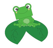 Cute little frog isolated on white background Stock Photography