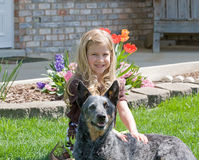 Cute Little Girl. With Her Dog Royalty Free Stock Images