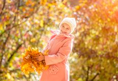 Little girl in an autumn forest Royalty Free Stock Photo