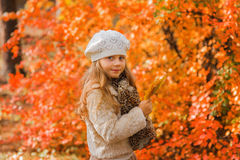 Cute little girl in autumn park holding a bouquet of maple leaves Royalty Free Stock Images