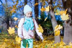 Cute little girl at autumn sunny day outdoor Stock Photos