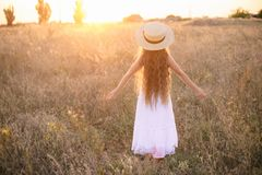 Cute little girl with blond  hair in a summer field at sunset royalty free stock photos