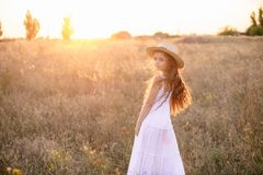Cute little girl with blond  hair in a summer field at sunset stock photos