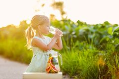 Cute little girl with blonde hair drinking lemonade outdoor. Detox fruit infused flavored water, cocktail in a beverage dispenser stock images