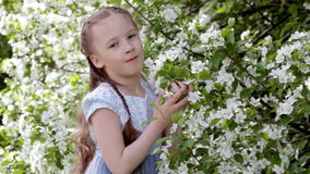 Cute little girl in blooming apple tree garden at spring. Cute little girl in dress in blooming apple tree garden at spring stock video footage