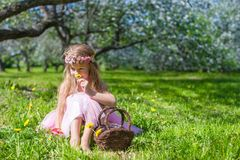 Cute little girl in blossoming apple garden  Stock Photography