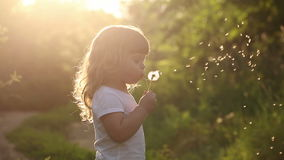 Cute little girl is blowing on dandelion. A cute little girl blow on a dandelion. Rest at nature. Slow motion stock footage