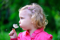 Cute little girl blowing dandelion Royalty Free Stock Image